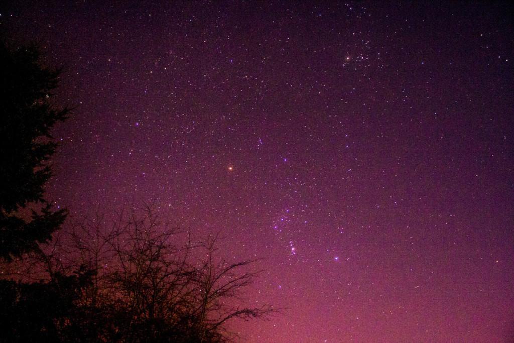 Foto van sterren in de Ardennen gemaakt door Marcus Bergsma.