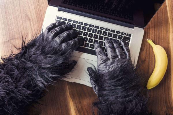 Rechtenvrije foto van gorilla achter zijn laptop via Gratisography