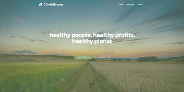 Co-AMS.com